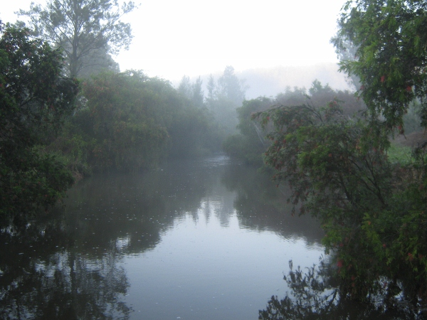 A misty morning and slightly flooded river